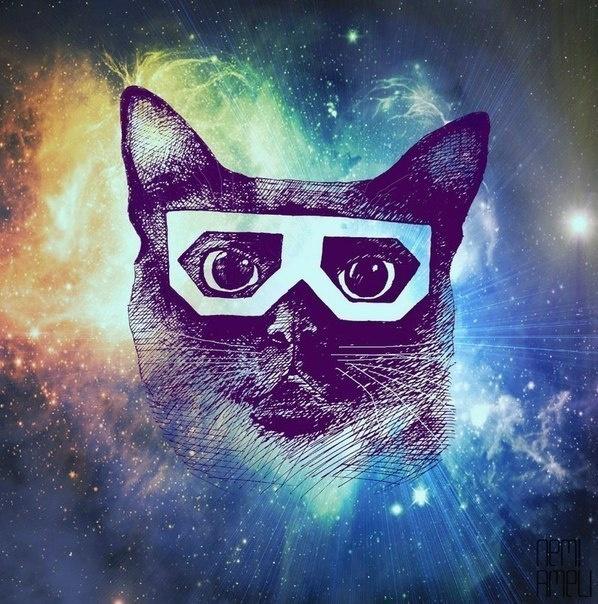 селедка картинки на аву в стим крутые кот разберем еще шесть